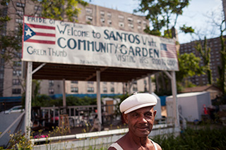Coney Island community garden